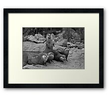 The teenagers Framed Print