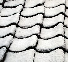 Snow covered roof tiles by buttonpresser