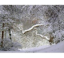 A Glimpse of Narnia Photographic Print