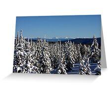 Winter wonderland in Montana  Greeting Card