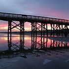 Isle of Palms Pier at Sunset by Daisy Dzedzej