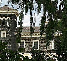 Bluestone mansion by Maggie Hegarty