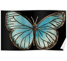 Butterly in Blue Poster