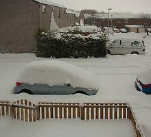 Snow place like home by Tom Gomez