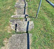 Those Dam Steps by Monnie Ryan