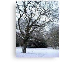 Bleak scene Metal Print