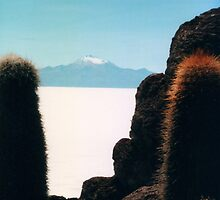 Salar de Uyuni, Bolivian salt flats by apple88