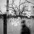 OnePhotoPerDay Series: 335 by C. by C. & L. | ABBILDUNG.ro Photography