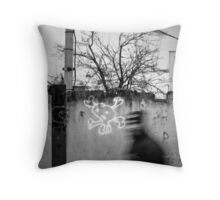 OnePhotoPerDay Series: 335 by C. Throw Pillow