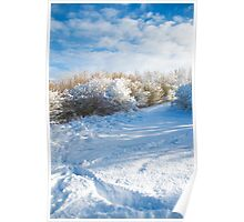 Winter wonderland where I live in the Meadows  Poster