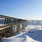 snowy nipawin bridge by axieflics