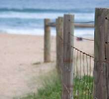 To the Beach by littlebiggphoto