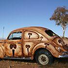 Beetle & Emus - Silverton by tonyshaw