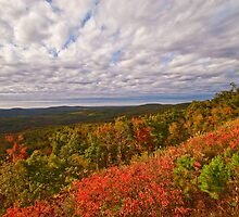 Clouds Over the Ouachita Forest in Autumn by Lisa G. Putman