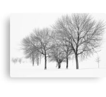 Stormy Winter Trees - Lake Michigan Canvas Print