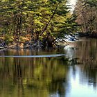 Merrimack River by Monica M. Scanlan