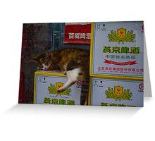 The Hong Kong Cat Greeting Card