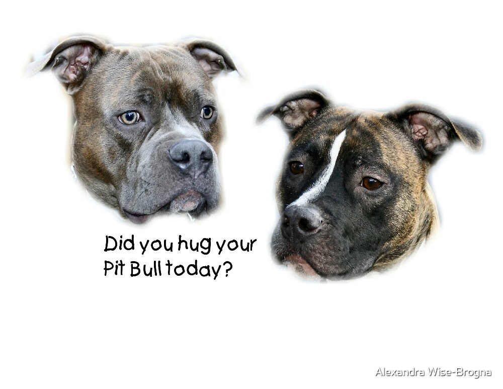 Did you hug your Pit Bull today? by Alexandra Wise-Brogna