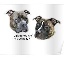 Did you hug your Pit Bull today? Poster