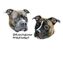 Did you hug your Pit Bull today? Photographic Print