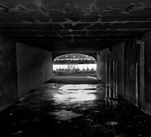Out of the darkness by Jeffrey  Sinnock