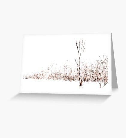 White Fall Greeting Card