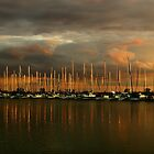 Sailboats at Samuel Smith by Jessica Dzupina