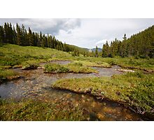Snaking creek Photographic Print