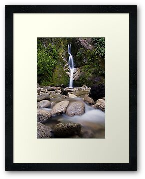 Dorothy Falls, West Coast by Michael Treloar
