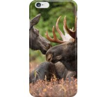 Cool Moose iPhone Case/Skin