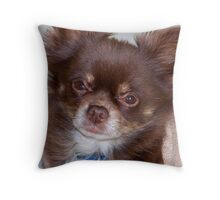 Harley Dean - Tiny Chihuahua Dog Throw Pillow