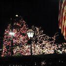 Christmas Tree / Nassau  St. by fiat777