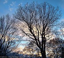 November Sky in Kalispell - West by rocamiadesign