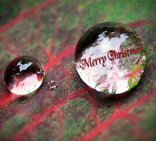 Christmas Rain Drops by Kym Howard