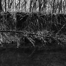 """8-mile creek """"The Door to Zombieland"""" by agenttomcat"""