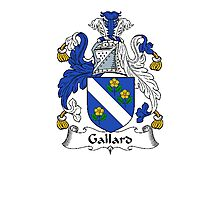 Coat of arms (family crest) for last-name or surname Gallard . Heraldry banner for your name. Photographic Print