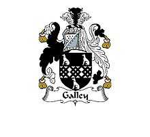 Coat of arms (family crest) for last-name or surname Gallay or Galley . Heraldry banner for your name. Photographic Print