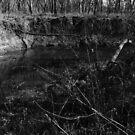 """8-mile creek """"The Door to Zombieland 2"""" by agenttomcat"""