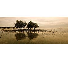 ThREE Friends - Moreton Island - Queensland Photographic Print