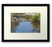 Williams River  Hunter Valley Framed Print