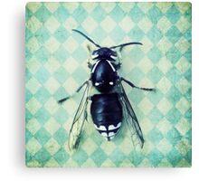 The hornet Canvas Print