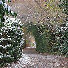 Bottom lane,Lindford. by relayer51