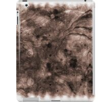 The Atlas of Dreams - Plate 10 iPad Case/Skin