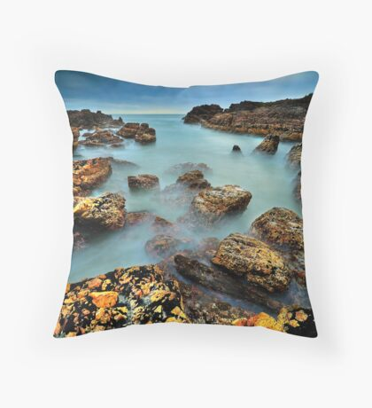 The Maelstrom Tamed Throw Pillow