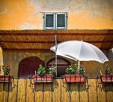 la bella italia by angelo marasco