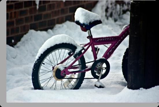 On Yer Bike by Trevor Kersley