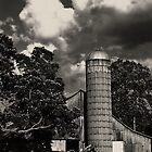 Silo by © Jolie  Buchanan