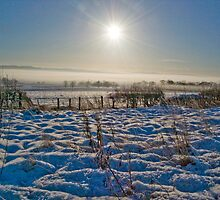 Winter Sun by Susan A Wilson