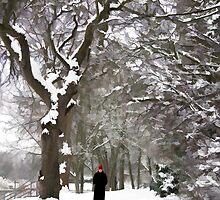 Lonely Walker by Rachael  Talibart