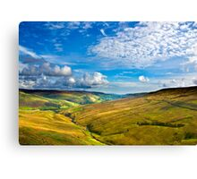 Summer View from The Buttertubs Canvas Print